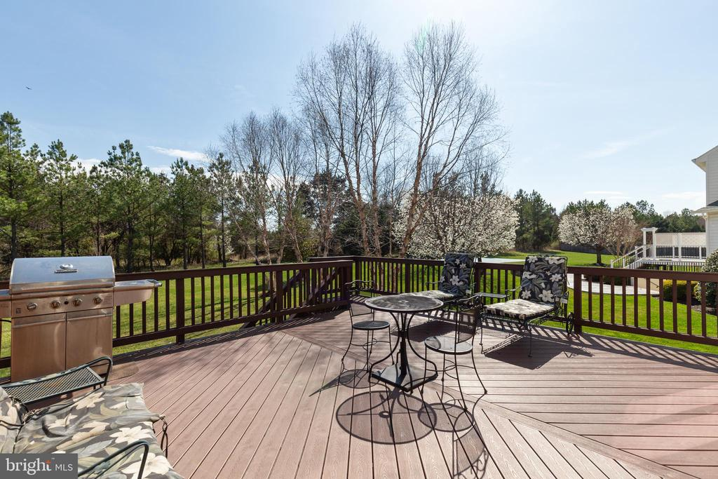 Trex Board Deck - 21946 HYDE PARK DR, ASHBURN