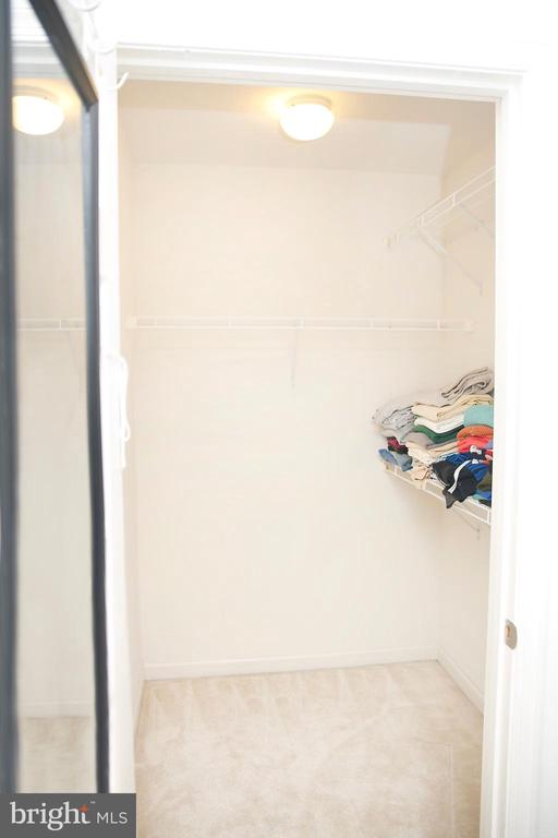 Two Walk in Closets in  Master Bedroom - 25928 KIMBERLY ROSE DR, CHANTILLY