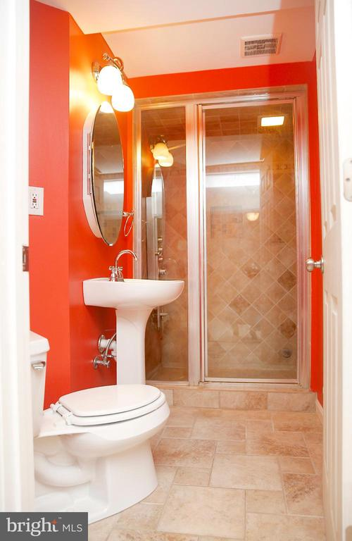 Spa-like  Bath in Lower Level with Steam shower - 25928 KIMBERLY ROSE DR, CHANTILLY