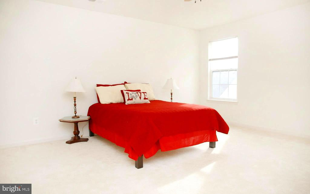Spacious Master Bedroom - 25928 KIMBERLY ROSE DR, CHANTILLY