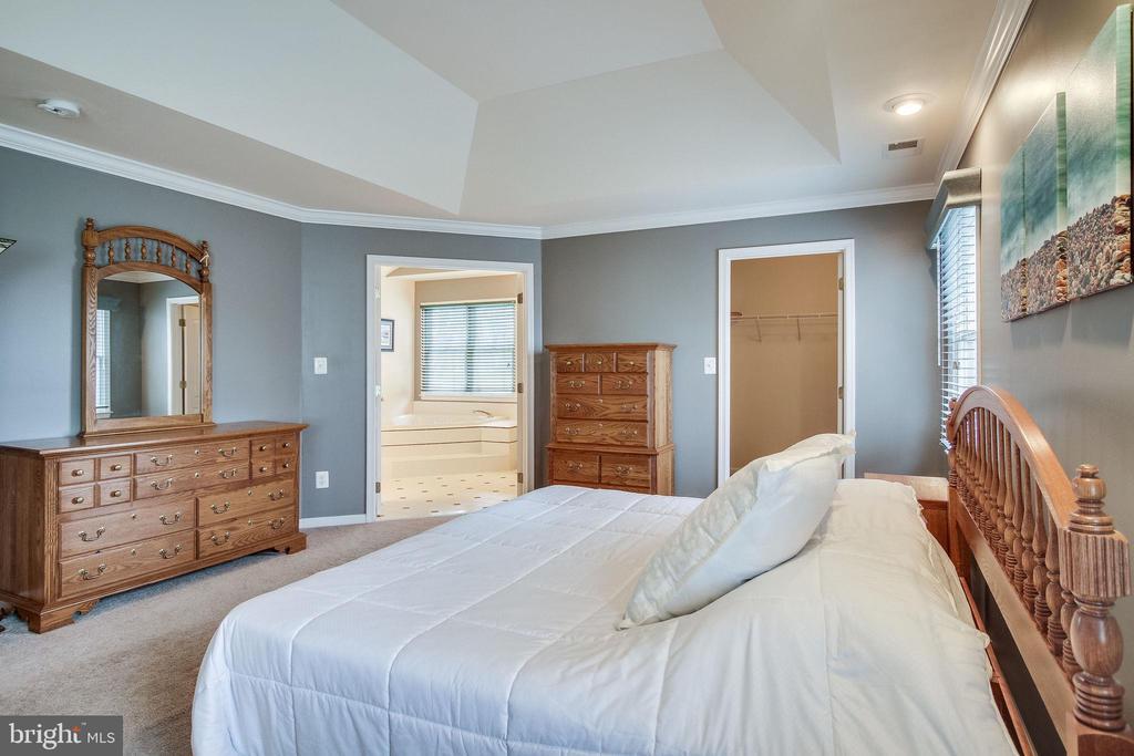 Master Bedroom - 13451 GRAY VALLEY CT, CENTREVILLE