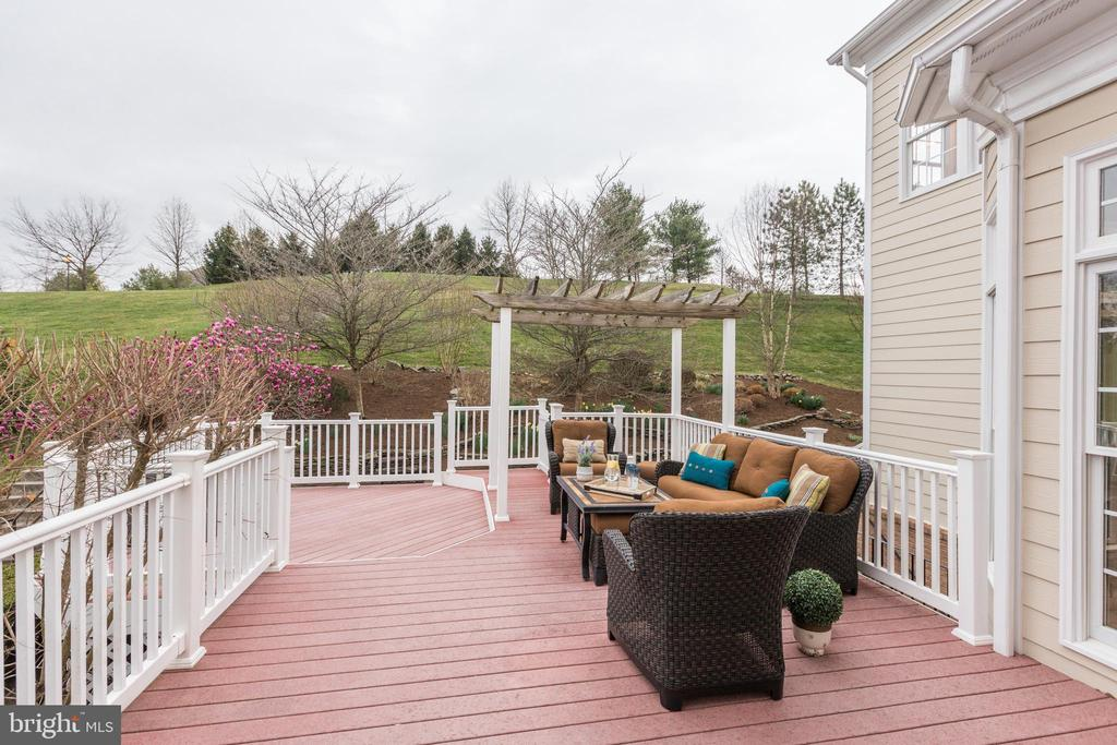 Private Views - Easy access to Riverfront park - 43475 SQUIRREL RIDGE PL, LEESBURG