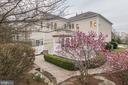Beautiful magnolia tree in bloom! - 43475 SQUIRREL RIDGE PL, LEESBURG