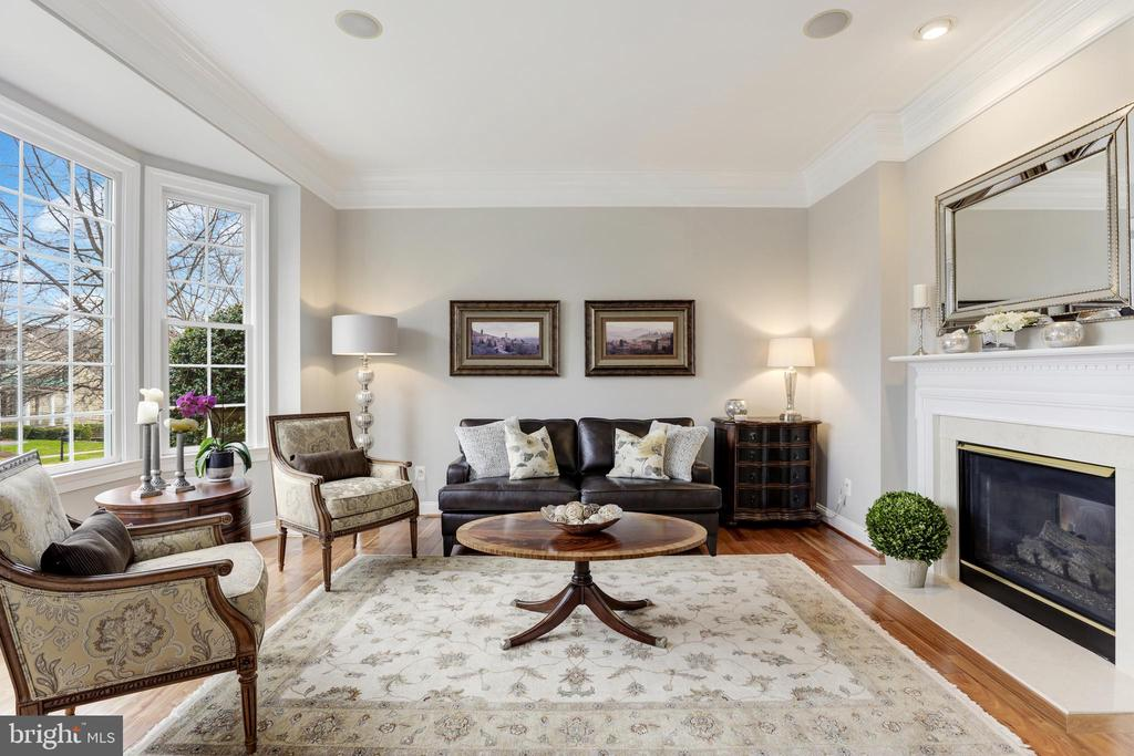 Double sided fireplace shared with family room - 43475 SQUIRREL RIDGE PL, LEESBURG