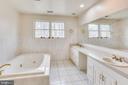 MASTER BATHROOM - WINDOWS-BEAUTIFUL FLOOR TILE - 7365 BEECHWOOD DR, SPRINGFIELD