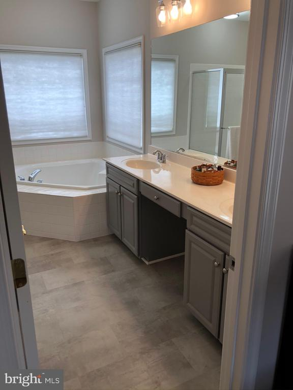 Master Bathroom - 43773 FARMSTEAD DR, LEESBURG