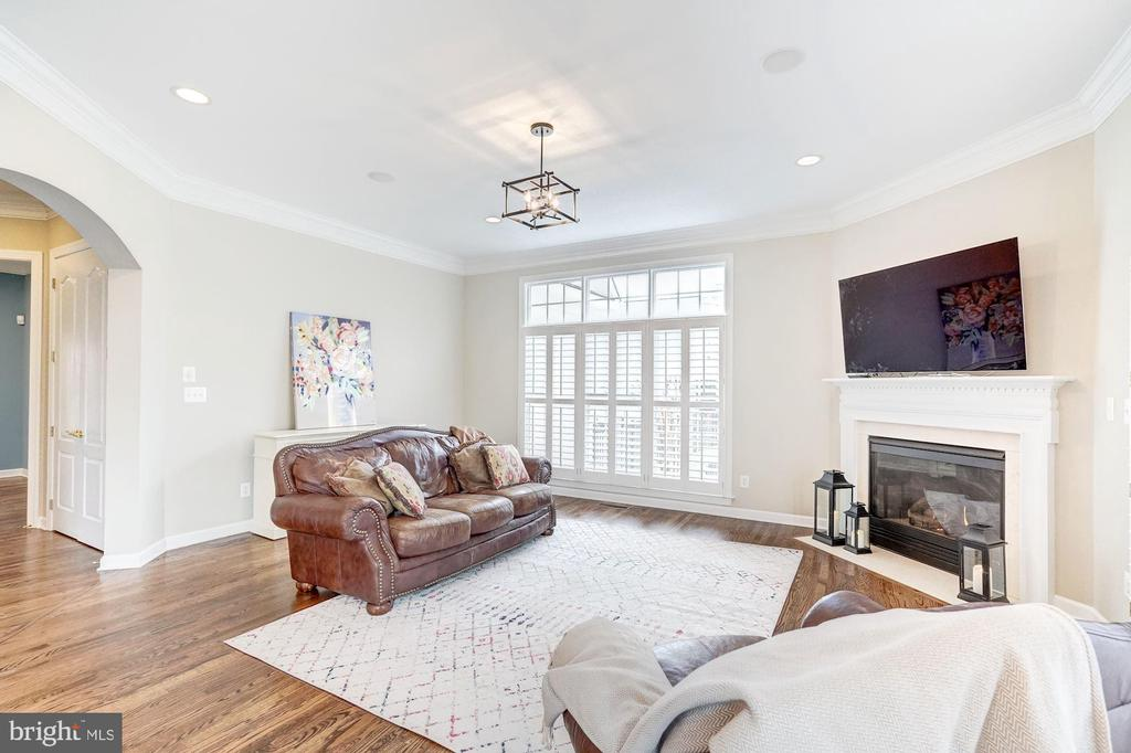 Family Room with Fireplace & Plantation Shutters - 18777 UPPER MEADOW DR, LEESBURG