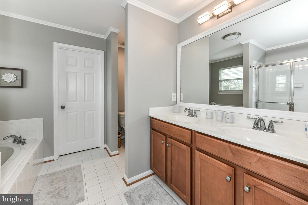 Master bath with double vanity! - 25974 KIMBERLY ROSE DR, CHANTILLY