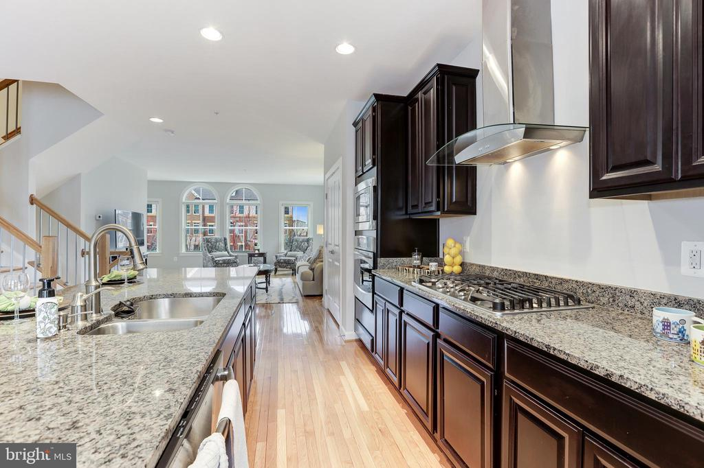 Granite countertops throughout - 44715 PLYMPTON SQ, ASHBURN