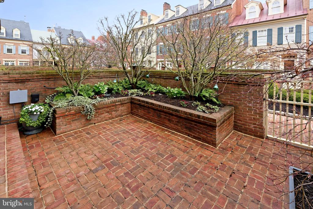 A private brick walled patio with mature plantings - 19 WILKES ST, ALEXANDRIA