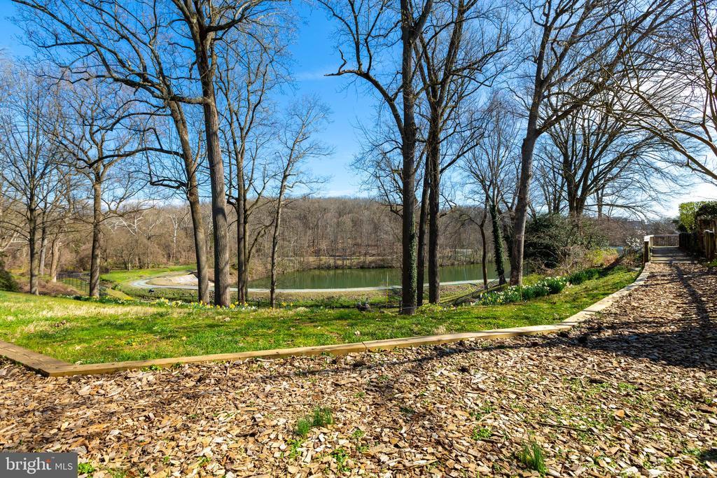 Rear nature path - 4311 TORCHLIGHT CIR, BETHESDA
