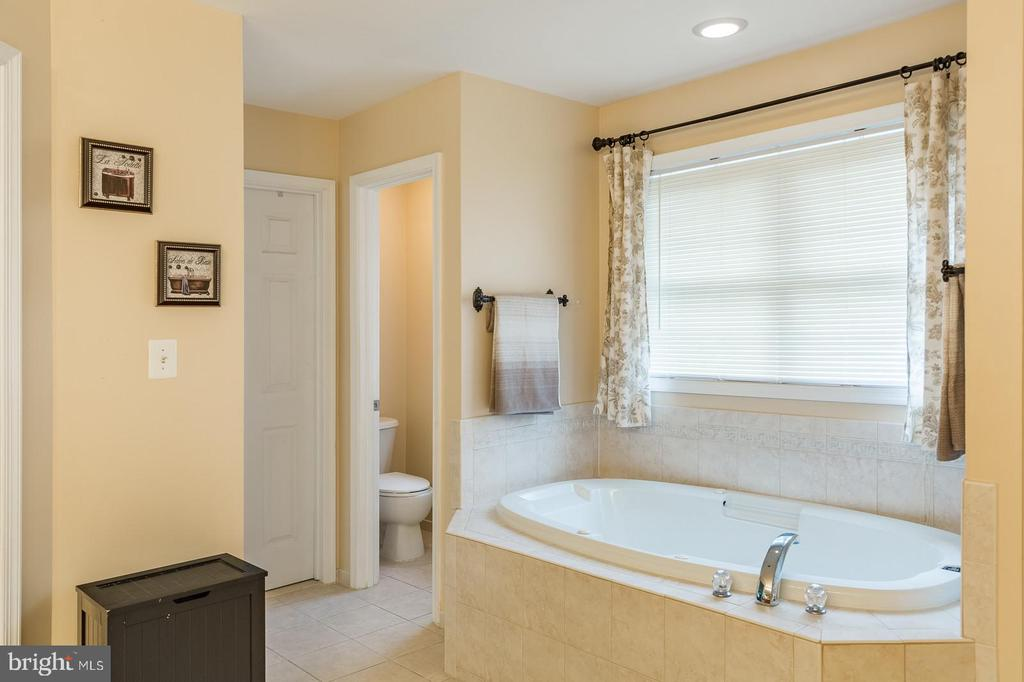 Owner's Suite Escape! Two walk-in closets... - 20226 BROAD RUN DR, STERLING