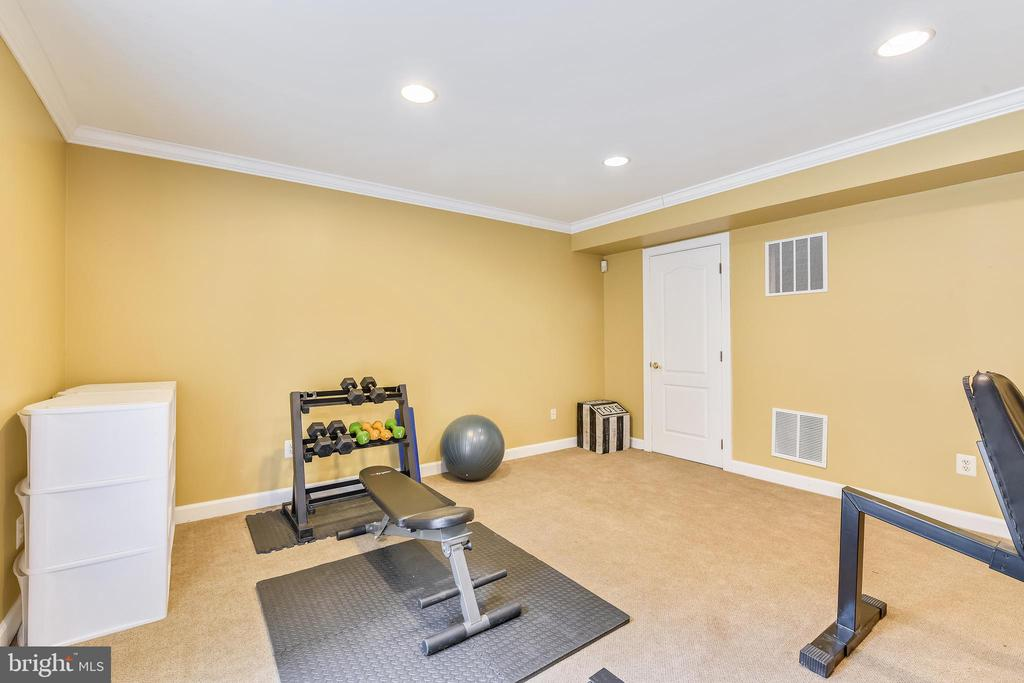 Lower Level Work Out Area - 47774 BRAWNER PL, STERLING