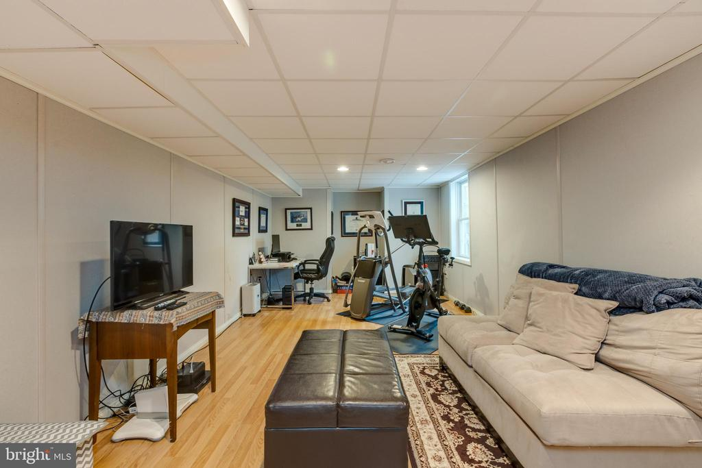 Wall system = quiet & safer for a rumpus room - 8206 CHERRY RIDGE RD, FAIRFAX STATION
