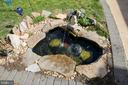 Koi pond to enjoy while relaxing outdoors! - 5917 CROSSIN CT, BURKE