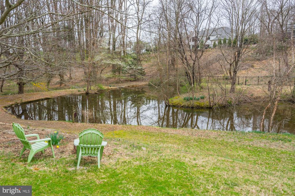 Tranquil Pond - 1312 MERCHANT LN, MCLEAN