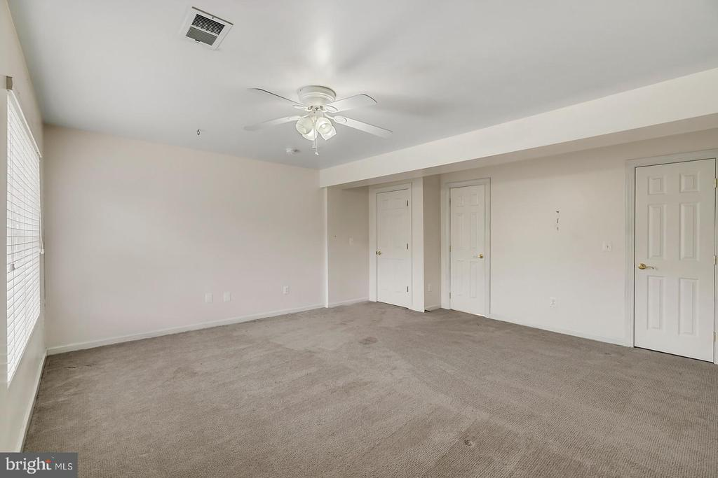 LL sixth bedroom w/ green views & private bath. - 43988 RIVERPOINT DR, LEESBURG