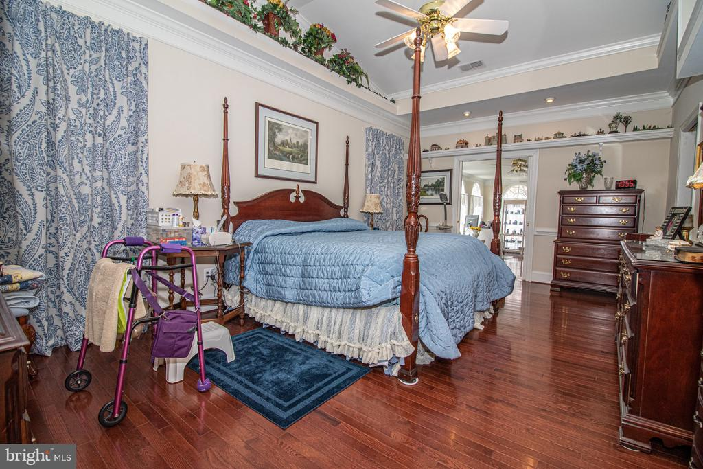 Main Level Master Suite - 25282 KENNEBEC DR, CHANTILLY