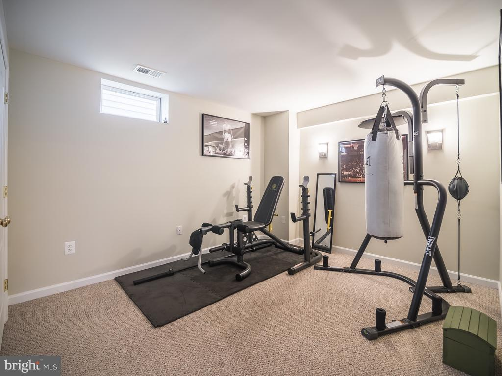 Gym - 43075 BARONS ST, CHANTILLY