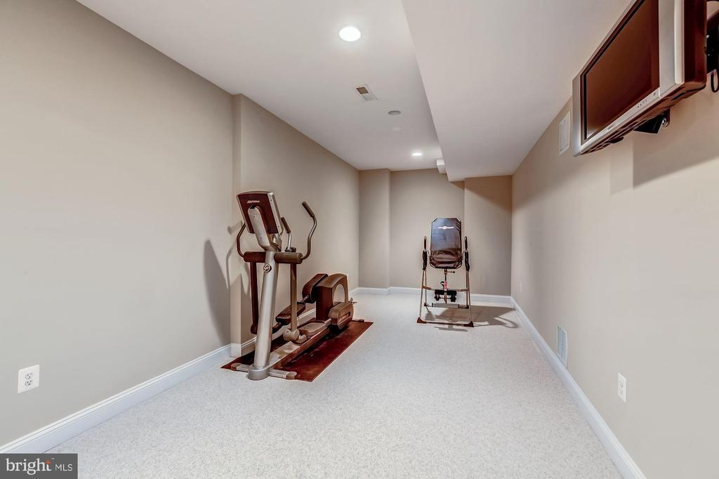 Exercise/Playroom/Bedroom - 20024 VALHALLA SQ, ASHBURN