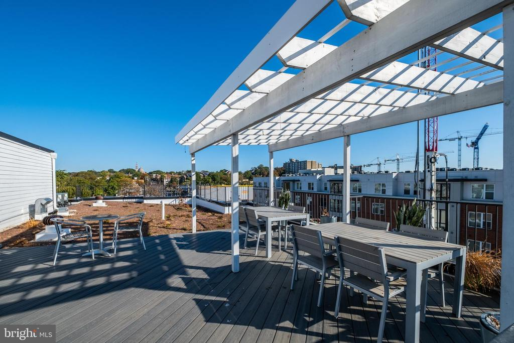 And the gorgeous roof deck!!! - 340 ADAMS ST NE #104, WASHINGTON