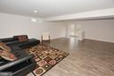 Family room in lower level - 25693 ARBORSHADE PASS PL, ALDIE