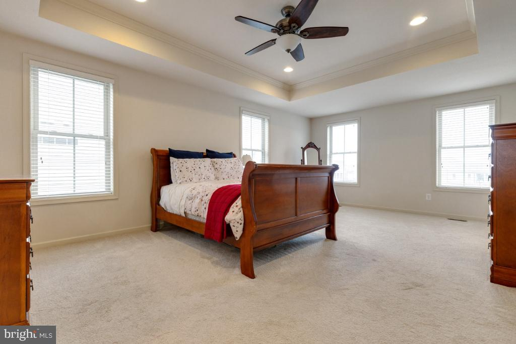 Large Master Suite - 23578 PROSPERITY RIDGE PL, BRAMBLETON