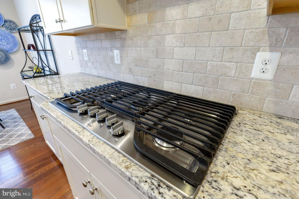 5  Burner Cooktop  and Ceramic Backsplash - 23578 PROSPERITY RIDGE PL, BRAMBLETON