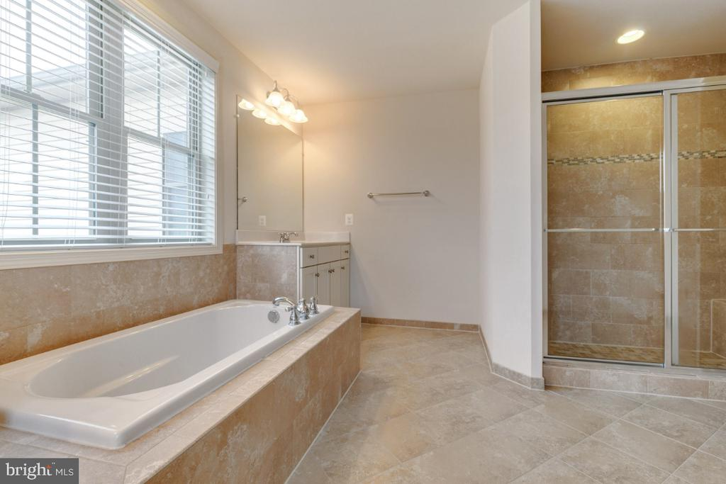 Soaking Tub and Separate Shower - 23578 PROSPERITY RIDGE PL, BRAMBLETON
