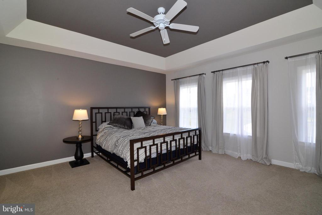 Large Master Bedroom w/ tray ceiling - 55 STONE OAK PL, ROUND HILL