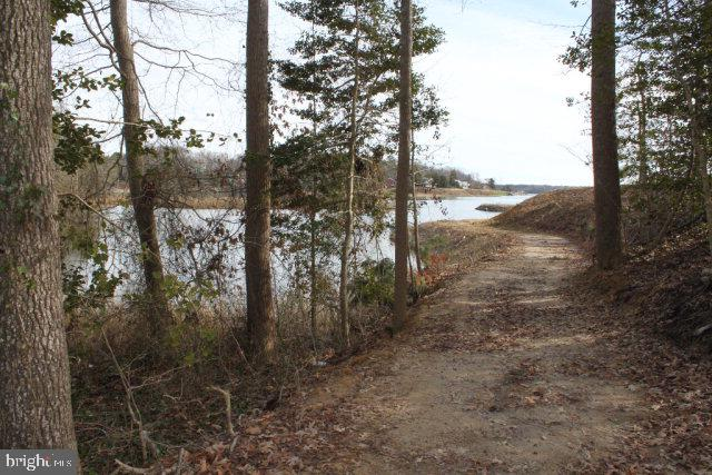 Land for Sale at Burgess, Virginia 22432 United States