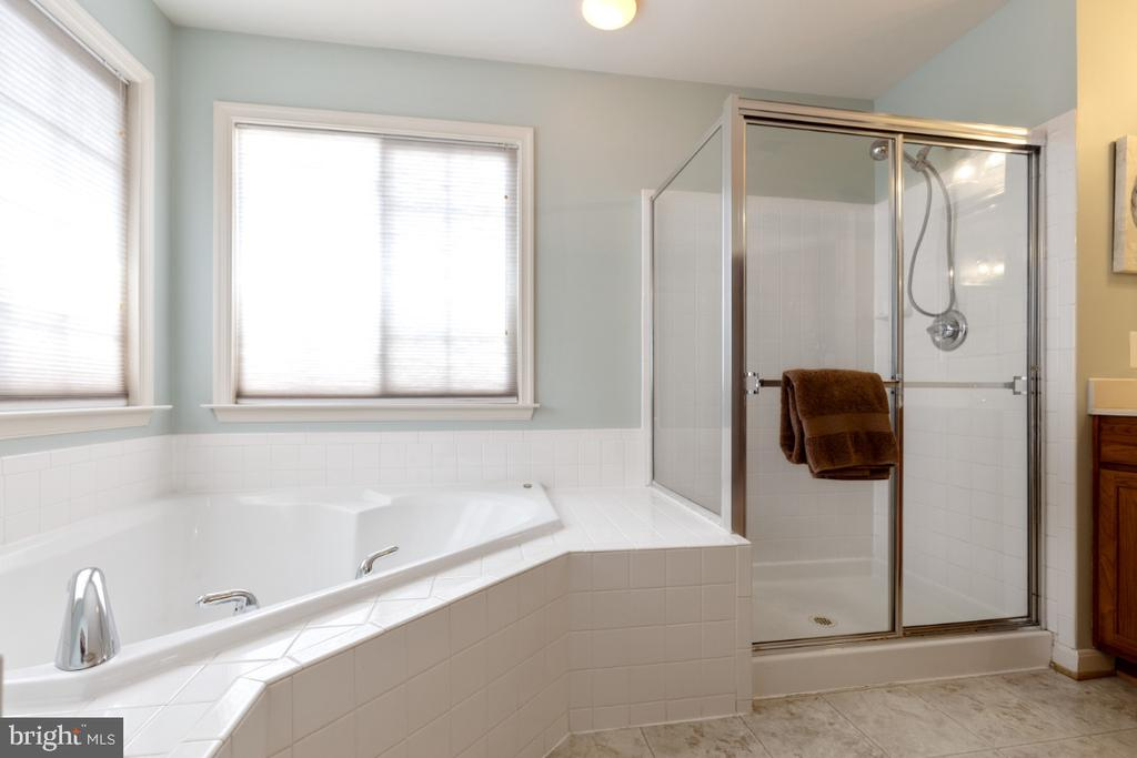 Master Bathroom Soaking Tub - 215 ALPINE DR SE, LEESBURG