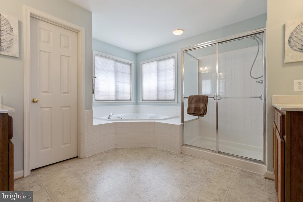 Master Bathroom with Soaking Tub & Separate Shower - 215 ALPINE DR SE, LEESBURG