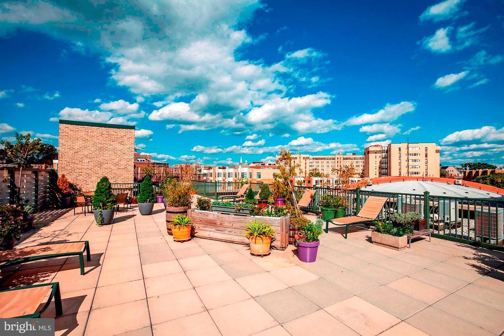 Great city views - 1701 KALORAMA RD NW #206, WASHINGTON