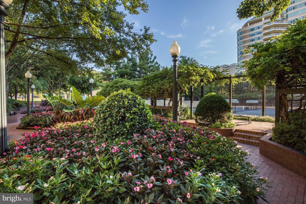 Somerset House gardens and grounds - 5600 WISCONSIN AVE #1408, CHEVY CHASE