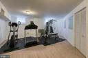 Rec room/Gym - 5 EMERSON CT, STAFFORD