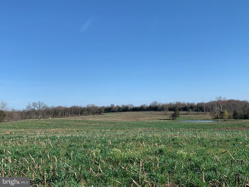 Đất đai vì Bán tại Bealeton, Virginia 22712 Hoa Kỳ