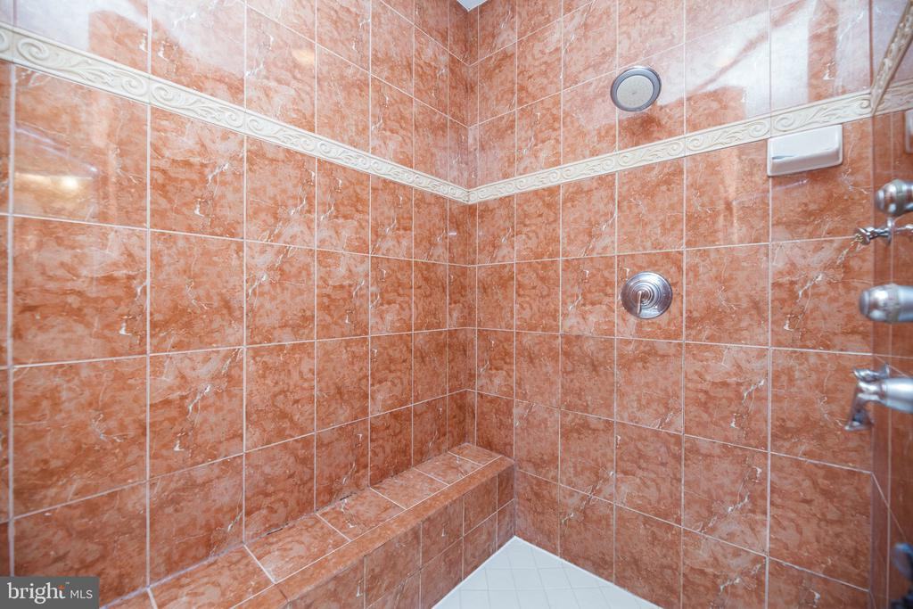 Large Master Shower - 18754 KIPHEART DR, LEESBURG