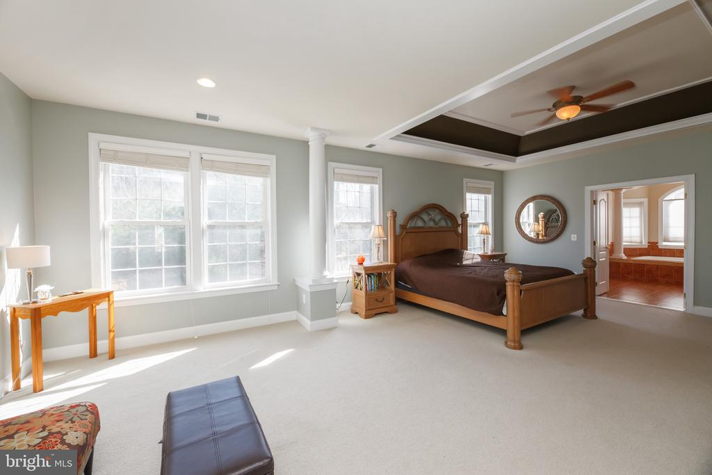 Expansive Master Bedroom with Sitting Area - 18754 KIPHEART DR, LEESBURG