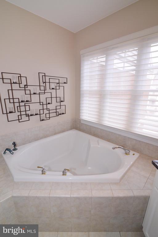 Master bathroom soaking tub - 43663 PALMETTO DUNES TER, LEESBURG