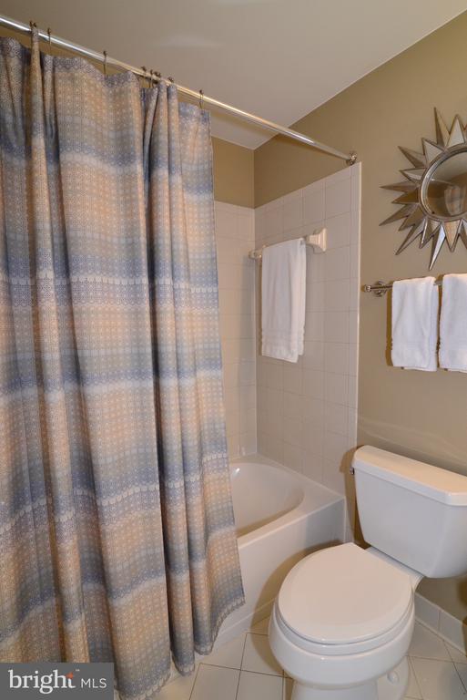 Lower level full bathroom - 43663 PALMETTO DUNES TER, LEESBURG