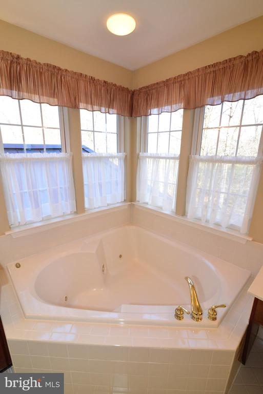 Relax in owners soaking tub - 1439 HARLE PL SW, LEESBURG