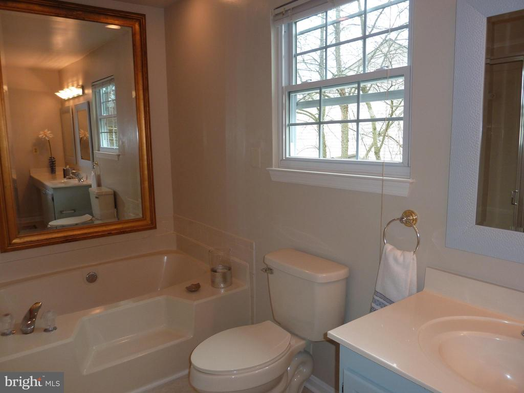 Bath has separate shower and soaking tub - 13192 ROVER GLEN CT, HERNDON