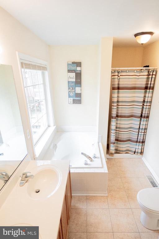 Attached Master Bath - 36009 WILDERNESS SHORES WAY, LOCUST GROVE