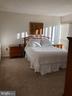 Master Bedroom  w/ ensuite Bath - 1300 ARMY NAVY DR #1012, ARLINGTON