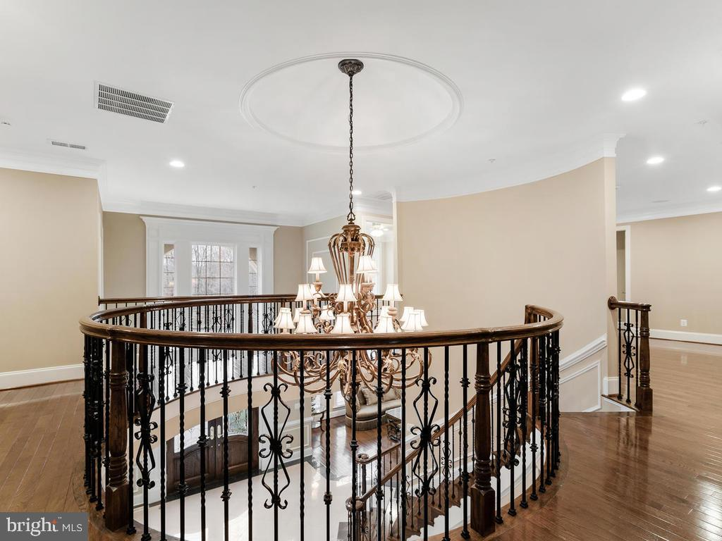 FOYER CUSTOM LIGHT FIXTURES($3,000)W/ALADDIN LIFT - 10801 WINDCLOUD CT, OAKTON