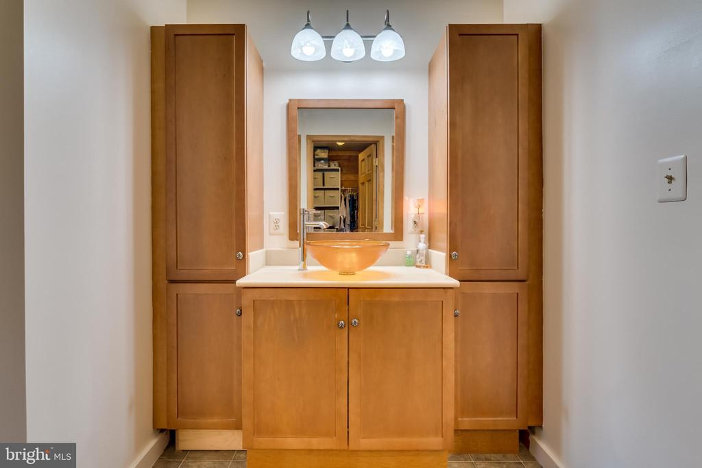 Master Bathroom - 9512 TODDS TAVERN DR, SPOTSYLVANIA