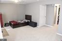 Huge area with brand new carpet - 44084 FERNCLIFF TER, ASHBURN