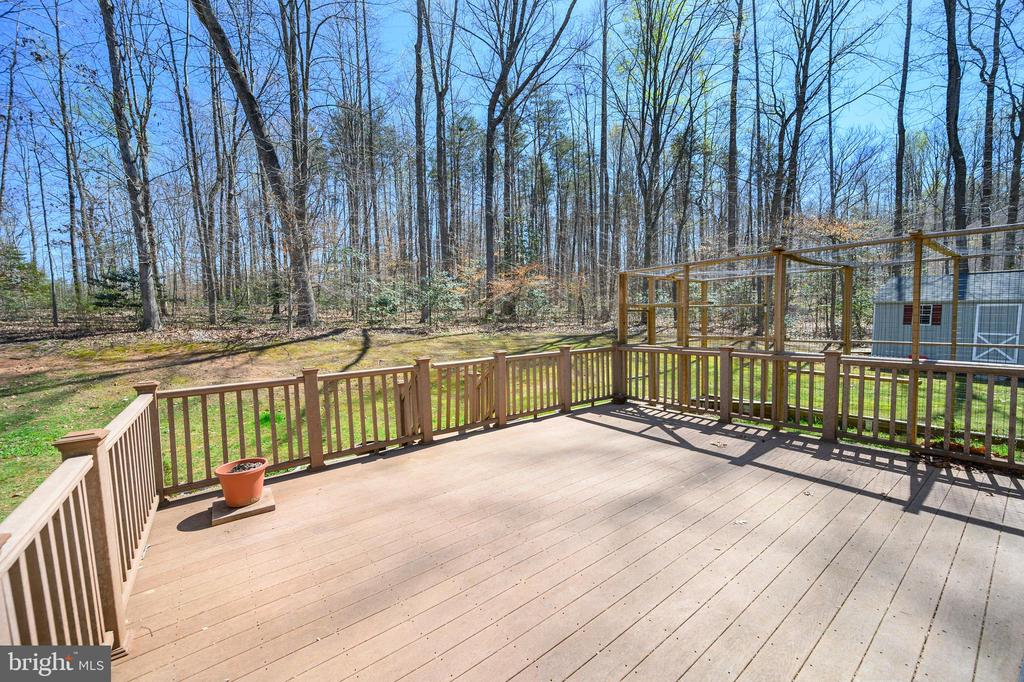 Large Trex deck off Living Room - 10111 BROOKRUN CT, SPOTSYLVANIA