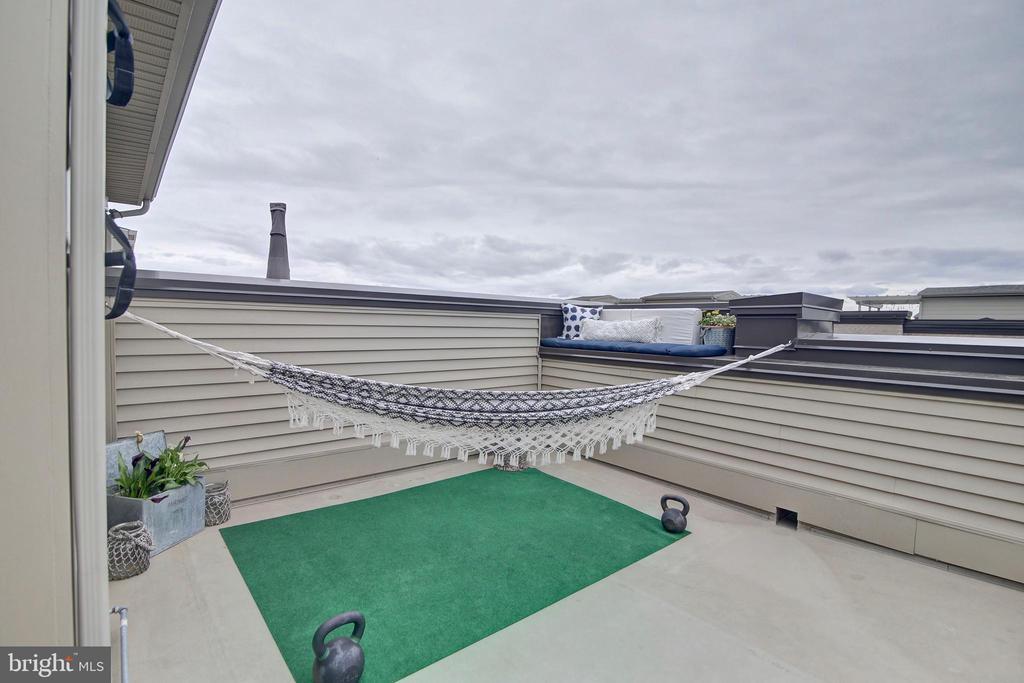 Rooftop terrace - 20539 MILBRIDGE TER, ASHBURN